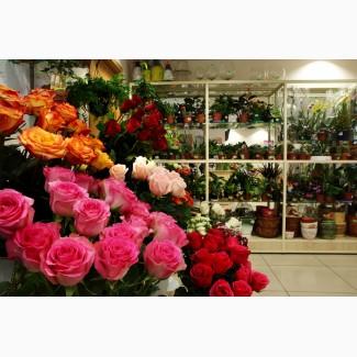 Букеты цветов в Одессе, заказать букет с цветами