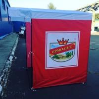 Палатки партийные агитационные рекламные с печатью лого