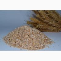 Пропонуємо ВИСІВКИ пшеничні
