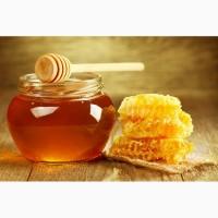 Куплю мед в Запорожской обл. и соседние обл