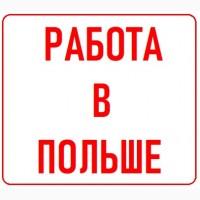 Работа в Польше Легально   Бесплатные Вакансии от WorkBalance