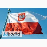 Разнорабочие в Польшу (упаковка печенья)