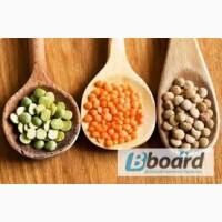 Семена сои толерантной к гербицидуРаундАп.Сорта с вегетациеи 87, 95, 105, 115 дней