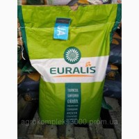 Семена подсолнечника (евралис) ЕС Белла импорт, распродажа 2016 года урожая