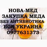 ЗАКУПКА МЁДА - Никопольский, Магдалиновский, Криничанский, Днепропетровский район