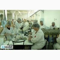 Работницы на упаковку продукции, Польша