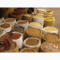 Продажа продовольственных товаров Днепр