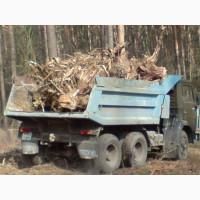 Вывоз веток и листвы Киев