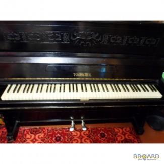 Продам Пианино(диплом 2-й степени)!