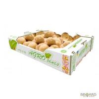 Продам оптом картофель TM AGRO SENCO