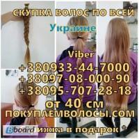 Продать волосы в Виннице дорого Цех по производству париков покупает волосы дорого