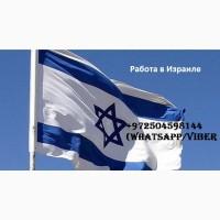 Работа в Израиле для Украинцев. Легализация
