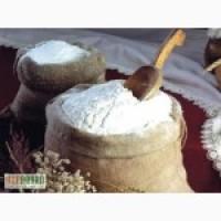 Харьковская обл. Компания оптом продает пшеничную муку 1/с, в/с FCA 210 $/т