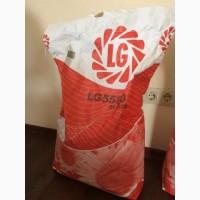 Семена подсолнечника Limagrain 5580 (новая Тунка)