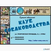 Сумской областной КЛУБ СОБАКОВОДСТВА