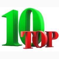 Раскрутка сайта. Вывод в Топ 10 поисковых систем. Продвижение сайтов от 500 грн
