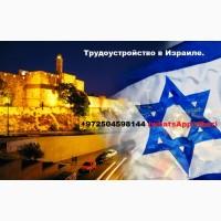 Трудоустройство в Израиле. Работа за кордоном