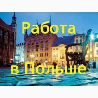 Рабочая виза и легальная работа в Польше