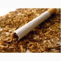 Продам табак Вирджиния Берли Махорка