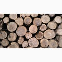 Продам дрова, дуб, ясень.Кривой Рог Централь-Городской