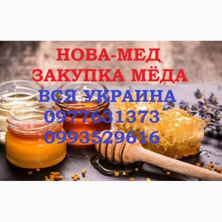 Куплю мёд с РАПСА от 500. кг. Вся Украина