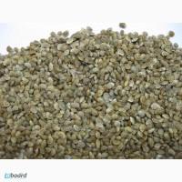 Эспарцет, сорт Песчаный 1251 семена