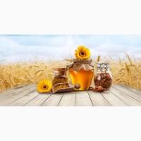 Куплю мёд НИКОЛАЕВСКАЯ обл. Казанковський р. и вся область