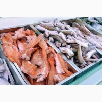 Холодильные камеры для рыбы и морепродуктов Алькантар ООО