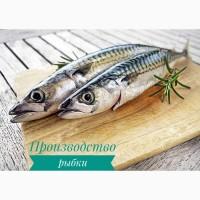 В Польшу требуются работники на завод по производству рыбы
