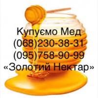 Купим оптом мед Каменское (Днепродзержинск)
