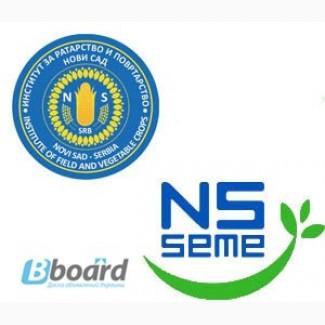 Сербське насіння соняшника та кукурудзи: НС-2017, НС-6043, Рімі, Прімі, НС-2014, НС 101