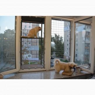 Балкончик для кошки на окно Броневик Днепр