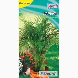 Продам семена комнатных цветов ТМГелиос