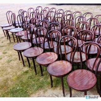 Стільці Віденські б/у для кафе, кав'ярні